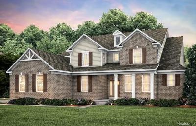 Lake Orion Single Family Home For Sale: 1193 Longspur Blvd