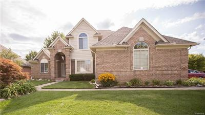 Macomb Single Family Home For Sale: 46707 Riverwoods Dr