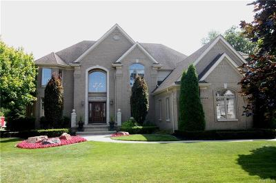 Shelby Twp Single Family Home For Sale: 12900 Partridge Run
