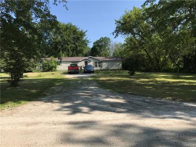 Smiths Creek Single Family Home For Sale: 7490 Ravenswood Rd