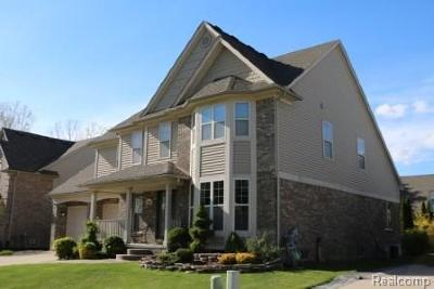 Harrison Twp Single Family Home For Sale: 27645 Coleridge St