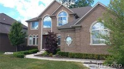 Harrison Twp Single Family Home For Sale: 39073 Nautical Ln