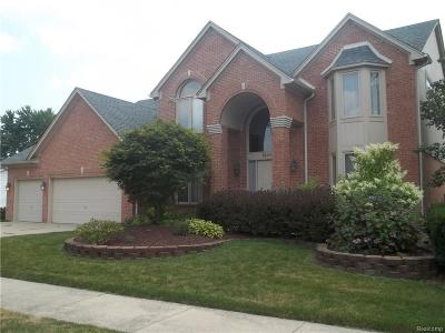 Troy Single Family Home For Sale: 1246 Cadmus Dr