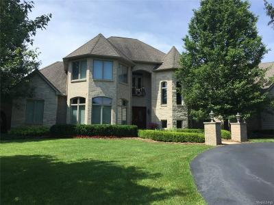 Clarkston Single Family Home For Sale: 8343 High Meadow Trl
