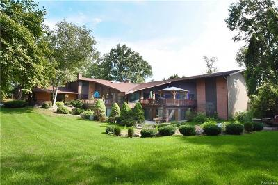 Bloomfield Hills Single Family Home For Sale: 285 W Hickory Grove Rd
