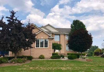 Rochester Hills Single Family Home For Sale: 2949 Fair Acres Dr
