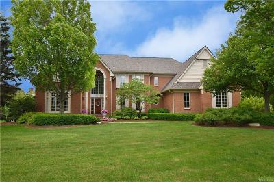 Rochester Single Family Home For Sale: 3461 Moceri Crt