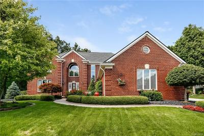 Shelby Twp Single Family Home For Sale: 3775 Newland Crt