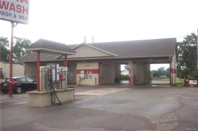 Clinton Township Commercial/Industrial For Sale: 43540 N Gratiot