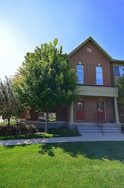 Shelby Twp Condo/Townhouse For Sale: 53092 Celtic Crt