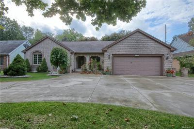 Livonia Single Family Home For Sale: 18937 Wayne Rd