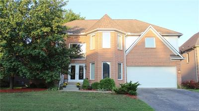 Southfield Single Family Home For Sale: 23030 Kristy Ln