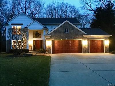 Clarkston Single Family Home For Sale: 6157 Lake Waldon Dr