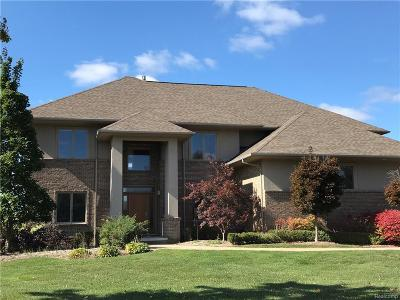 Rochester Single Family Home For Sale: 4176 Oak Tree Cir