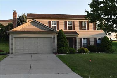 Rochester Hills Single Family Home For Sale: 318 Whitney Dr