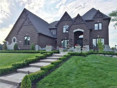 Rochester Hills Single Family Home For Sale: 3971 Piccadilly
