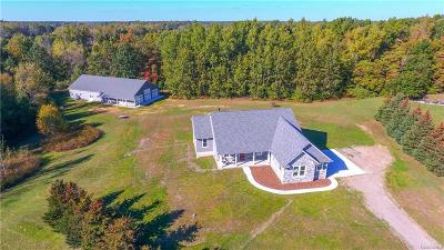 Lapeer Single Family Home For Sale: 1328 Sheryl Crt