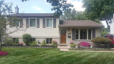Wayne Single Family Home For Sale: 14101 Hix St
