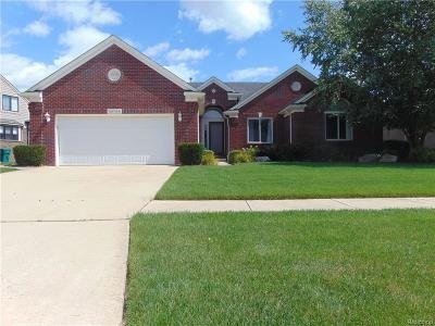 Macomb Single Family Home For Sale: 45788 Goodwill Ln