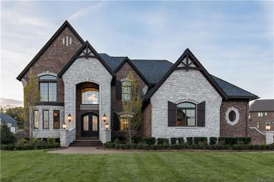 Rochester Hills Single Family Home For Sale: 3646 Piccadilly Dr