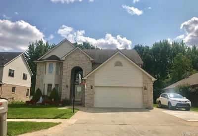 Sterling Heights Single Family Home For Sale: 4574 Lamia Dr