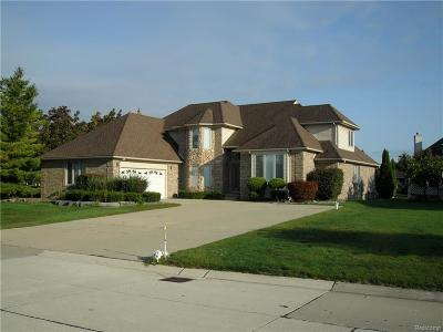 Sterling Heights Single Family Home For Sale: 41167 Marksway Crt