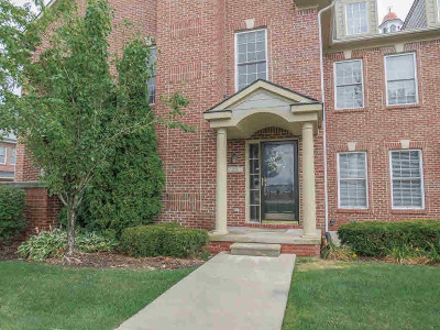 Canton Condo/Townhouse For Sale: 258 N Village Way