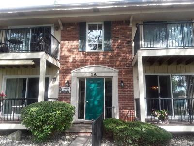Sterling Heights Condo/Townhouse For Sale: 12086 15 Mile Rd