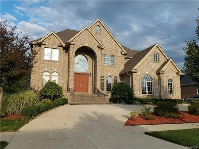 Shelby Twp Single Family Home For Sale: 54800 Pelican Ln