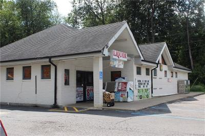Harrison Twp Commercial/Industrial For Sale: 30000 Jefferson Ave