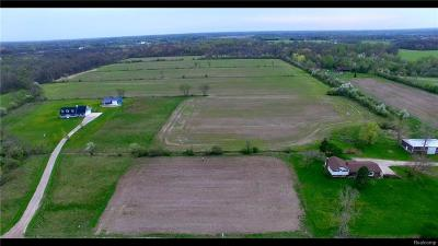 Residential Lots & Land For Sale: 27050 29 Mile