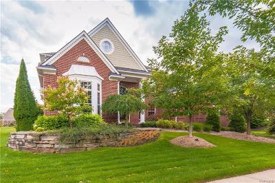 Clarkston Single Family Home For Sale: 7276 Ardsley Ln