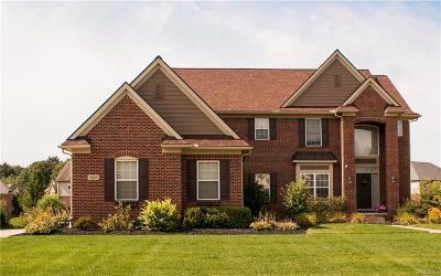 Lake Orion Single Family Home For Sale: 3665 High Grove Way