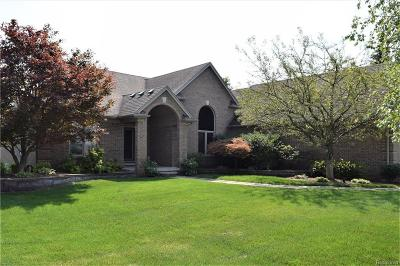 Sterling Heights Single Family Home For Sale: 39080 Early Dr