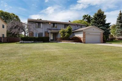 Farmington Hills Single Family Home For Sale: 37753 Hollyhead Dr