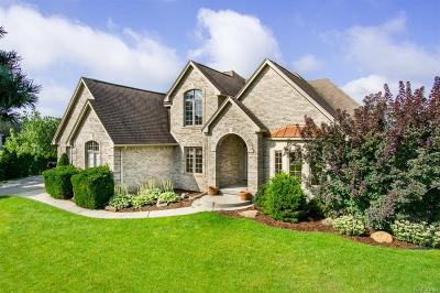 Lake Orion Single Family Home For Sale: 4544 Peppermill Ln