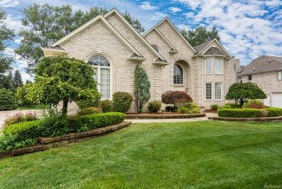 Troy Single Family Home For Sale: 2577 Songbird Dr
