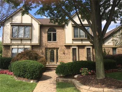 Livonia Single Family Home For Sale: 20203 Laurel Dr