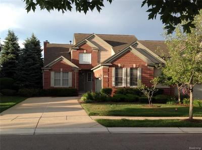 Rochester Condo/Townhouse For Sale: 5069 Belmonte Dr