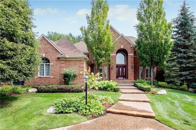Rochester Hills Single Family Home For Sale: 3871 Walnut Brook Dr