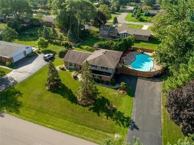 Troy Single Family Home For Sale: 2687 Avonhurst Dr