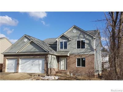 Rochester Hills Single Family Home For Sale: 3883 Samuel Ave