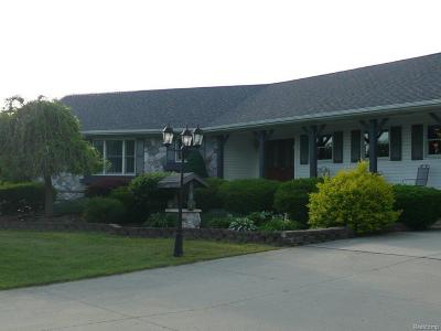 Lapeer Single Family Home For Sale: 6845 Wagner Rd
