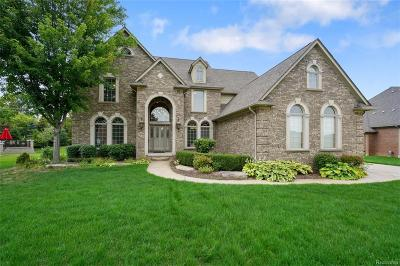 Shelby Twp Single Family Home For Sale: 56831 Hartley Dr W