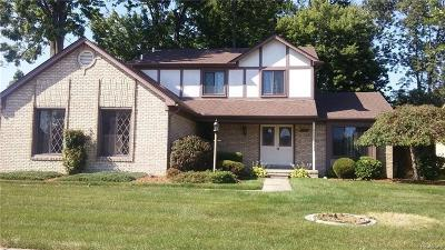 Chesterfield Single Family Home For Sale: 26527 Fairwood Dr