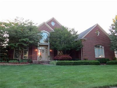 Shelby Twp Single Family Home For Sale: 56161 Ashbrooke Dr E