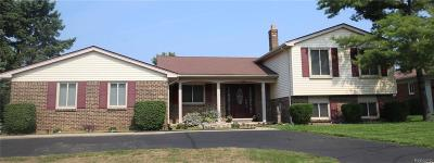 Troy Single Family Home For Sale: 6245 Atkins Dr