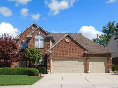 Clinton Township Single Family Home For Sale: 19831 Woodview Dr