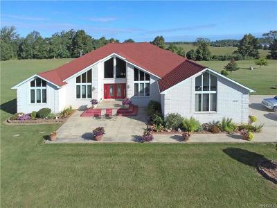 Lapeer Single Family Home For Sale: 5767 River Ridge Ln