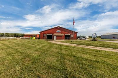 Commercial/Industrial For Sale: 6600 Meisner
